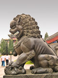 Lion statue inside the Summer  Royalty Free Stock Photos