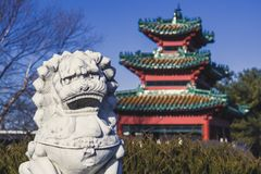 Lion Statue Keeps Watch über einem Asiatisch-ähnlichen Gebäude bei Robert D Ray Asian Gardens in Des Moines, Iowa lizenzfreies stockbild