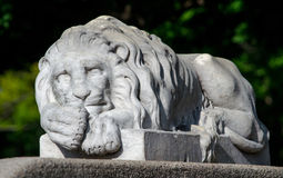 Lion statue. A large lion statue reclines on his stone ledge at a local zoo Stock Photography