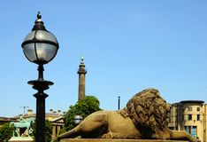 Lion Statue, Liverpool. Stock Images