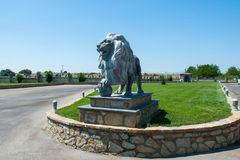 Lion statue, a lone lion on the lawn royalty free stock photo