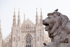 Lion statue in Milano and cathedral Stock Photo