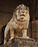 Lion statue in munich Royalty Free Stock Images