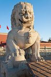 Lion Statue near Tienanmen Gate (The Gate of Heavenly Peace). Be Royalty Free Stock Image