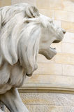Lion Statue, a new town hall of Hanover, Germany Stock Images