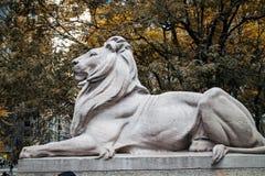Lion Statue New York Public-Bibliothek Lizenzfreie Stockbilder