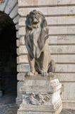 Lion Statue no palácio real do castelo de Buda Budapest, Hungria Imagens de Stock