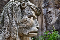 Lion statue. Old lion statue angry in the city of cordoba Stock Photography
