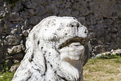 Lion statue. Stock Photography