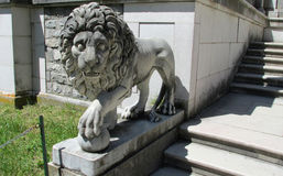 Lion statue in Pelisor Palace in Sinaia, Romania Stock Photography