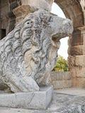 Lion Statue Pula Amphitheatre Stock Images
