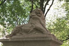 Lion Statue, Queen Victoria Fountain at Dorcester Square in Montreal, Quebec, Canada Stock Image
