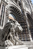 Lion statue of Saint Lorenzo church Stock Images