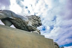 Lion statue at sky background, located in St. Petersburg. Russia stock images