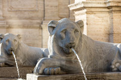 Lion statue spitting water in The Fountain of Moses in Rome, Royalty Free Stock Photo