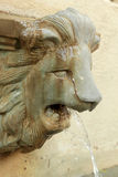Lion statue  spitting water - vintage style Stock Photos