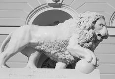 Lion statue, St.Petersburg. Lion statue near State Russian Museum in St.Petersburg, Russia. Black and white royalty free stock image