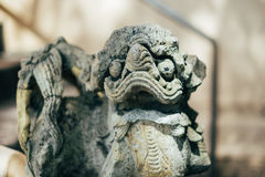 Lion statue in temple with sun light Royalty Free Stock Photos