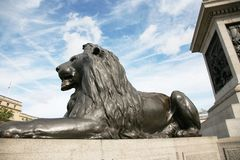 Lion statue  in Trafalgar Square. The four lion statues surrounding Nelson's column in Trafalgar Square are one of the most famous places for tourists Stock Photo