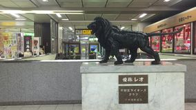 Lion statue at the train station in Toyama, Japan. Black lion statue at the train station in Toyama, Japan stock footage