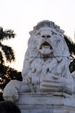 Lion Statue, Victoria Memorial, Kolkata, Royalty Free Stock Photo
