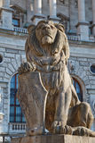 Lion statue in Vienna Royalty Free Stock Images