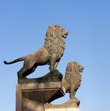 Lion statues. On the Stone Bridge, in Zaragoza, Spain Stock Images