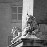 Lion statues, Arles, France. Statues of Lions adorning the Arles Obelisk at Place de la Republique in Arles, France. Black and white Stock Images
