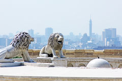 Egypt. Lion statues with cairo tower from salahaldin citadel in cairo in egypt stock photos