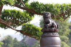 Lion statues. Chinese lion statues in the garden royalty free stock photos