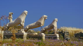 Lion Statues. Of delos Greece stock image