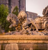 Lion statues mexico city. Lion statues in a plaza in mexico city royalty free stock photography