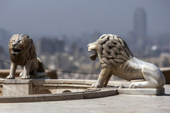 Lion statues stand within the Cairo Citadel in Cairo in Egypt. Lion statues stand within the Cairo Citadel (Citadel of Salah Al-Din) overlooking Cairo in Egypt stock photos