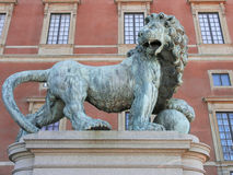 Lion. Stockholm Royalty Free Stock Image