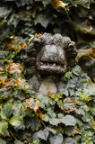 Lion by stone Stock Images