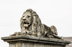 Lion stone statue in Budapest, Hungary Stock Photography