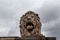 Lion statue in Budapest with background sky Stock Images