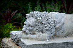 Lion Stone Statue. At the Olbrich Botanical Gardens in Madison, Wisconsin royalty free stock images