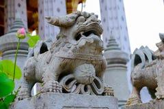 Lion Stone Thai-Chinese skulptur i Wat Arun den buddistiska templet i Bangkok, Thailand Arkivbilder
