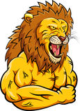 Lion strong mascot. Stock Photography
