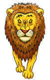 Lion strong mascot. Stock Images