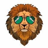 Lion and sunglasses. And thinking design graphic wild Royalty Free Stock Photos