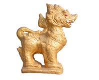 Lion sur le fond blanc Photographie stock