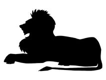 Lion, symbol of power Stock Photography