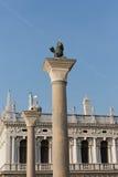 The lion symbol of Venice, Italy Royalty Free Stock Photo