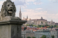 A lion of the Szechenyi Chain Bridge in Budapest, Hungary. With the Matthias Church and the Fisherman's Bastion in the background Stock Photos