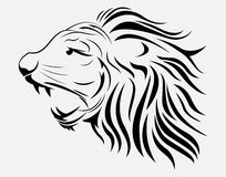 Lion tatto. Illustration of Lion tribal tatto isolated on white Stock Images