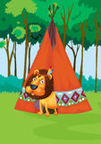 Lion and tent Royalty Free Stock Image