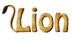 Lion Text peludo Imágenes de archivo libres de regalías