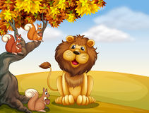 A lion with three squirrels at the hilltop Stock Photography